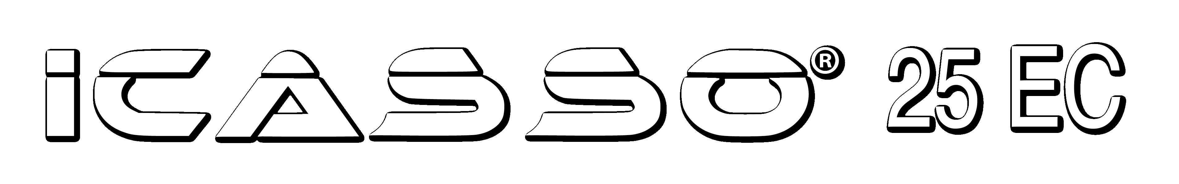 Icasso-01